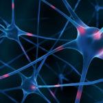 3d Render of active nerv cells